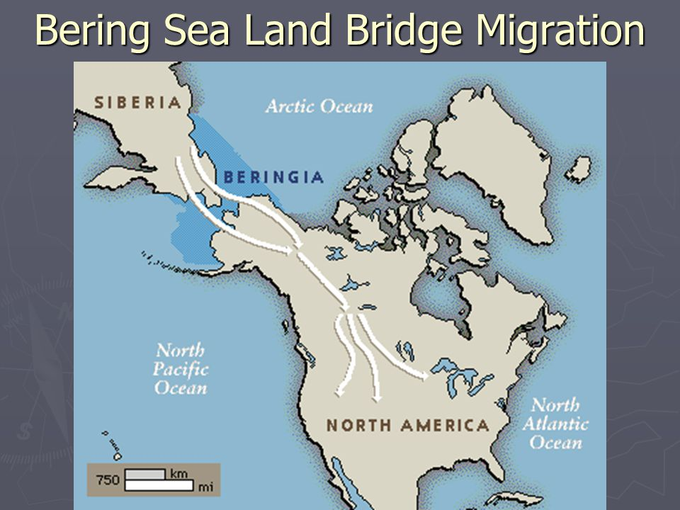 Bering Sea Land Bridge Migration