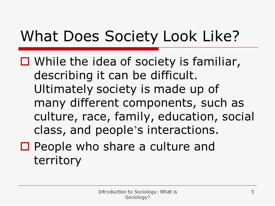 What Does Society Look Like