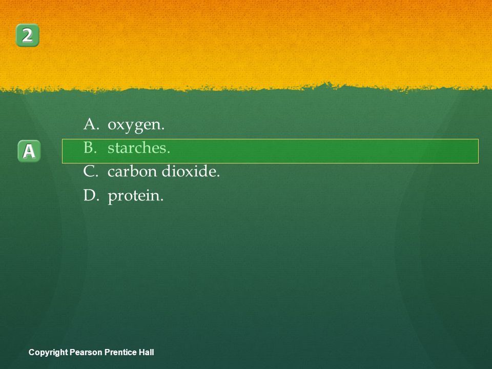 Plants use the sugars produced in photosynthesis to make