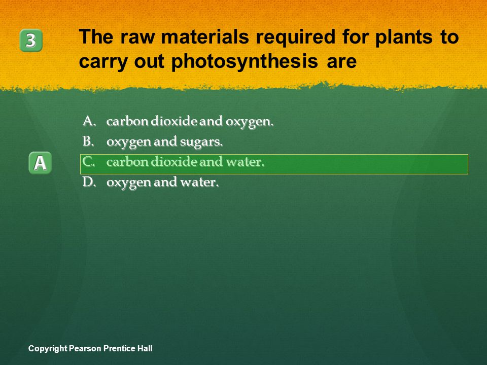 The raw materials required for plants to carry out photosynthesis are