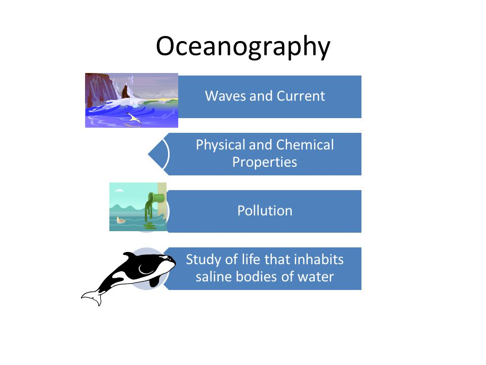 Oceanography Waves and Current Physical and Chemical Properties