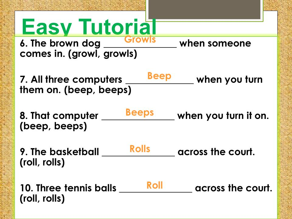 Easy Tutorial Growls. 6. The brown dog _______________ when someone comes in. (growl, growls)