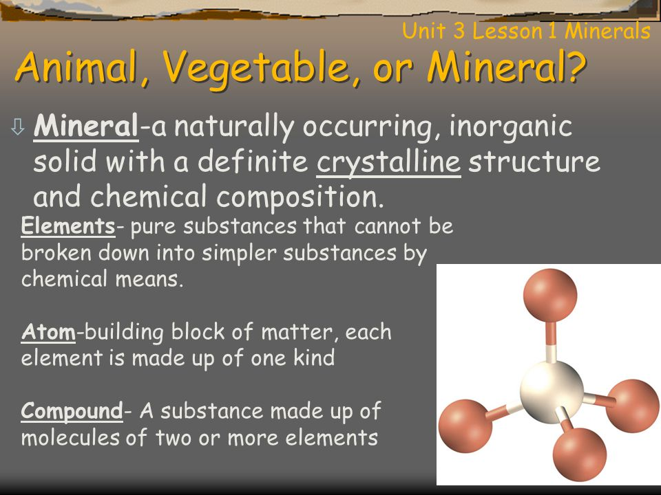 Animal, Vegetable, or Mineral