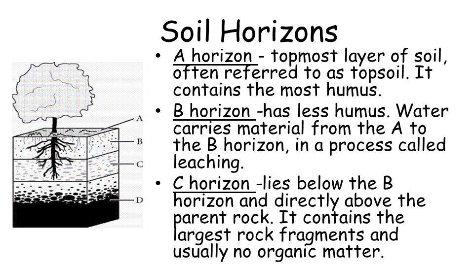 Unit 1 Lesson 5 Soil Formation
