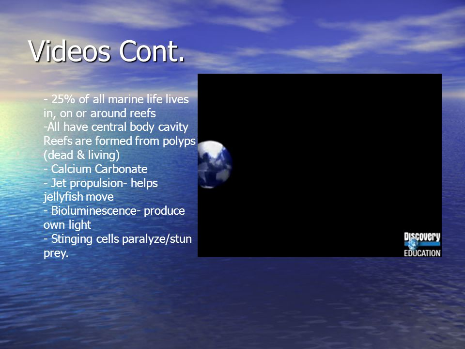 Videos Cont. - 25% of all marine life lives in, on or around reefs