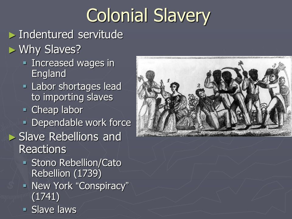 Colonial Slavery Indentured servitude Why Slaves