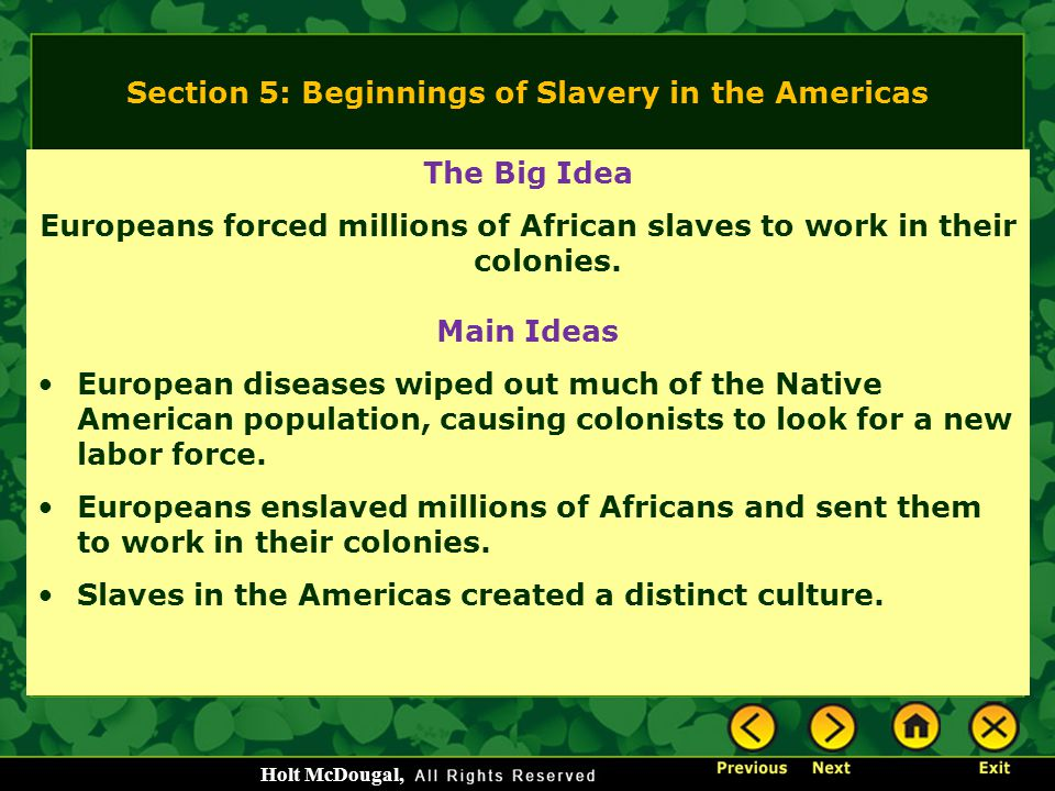 Section 5: Beginnings of Slavery in the Americas