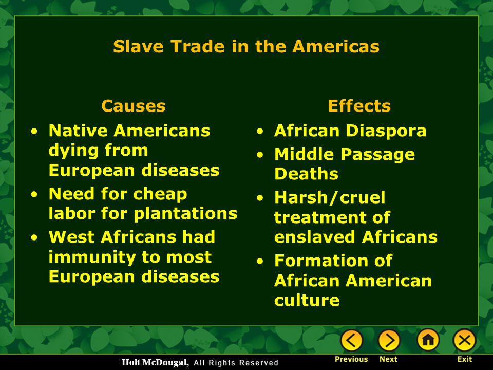 Slave Trade in the Americas