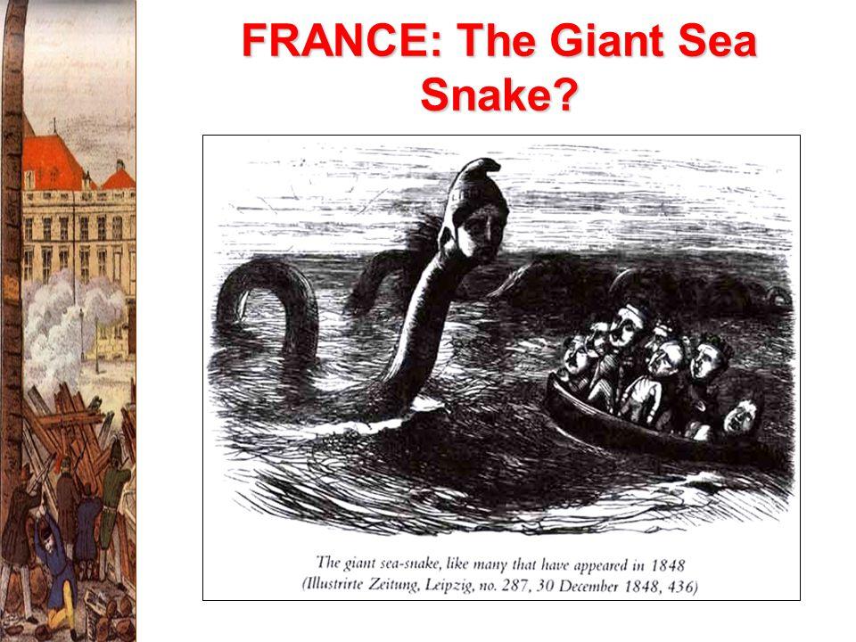 FRANCE: The Giant Sea Snake