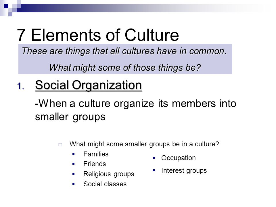 7 Elements of Culture Social Organization