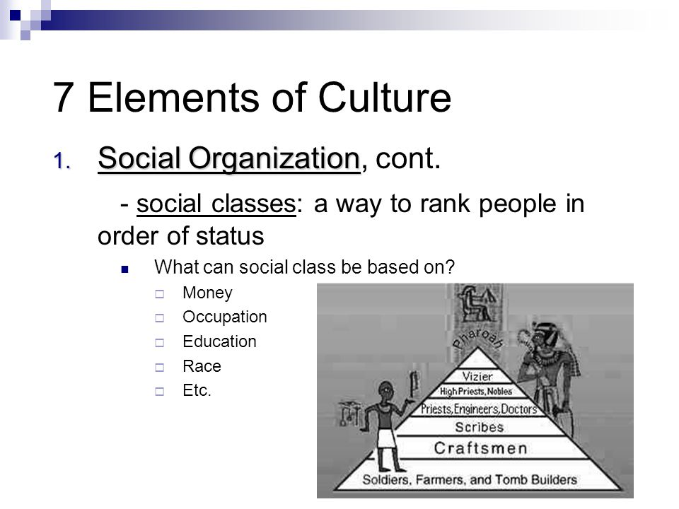 7 Elements of Culture Social Organization, cont.