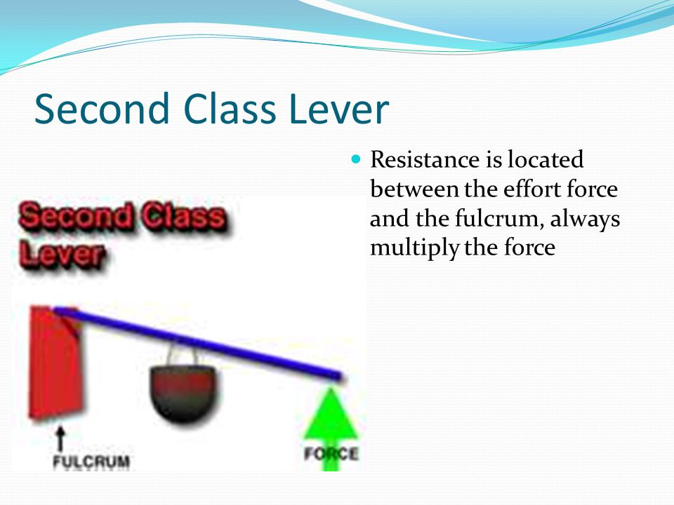 Second Class Lever Resistance is located between the effort force and the fulcrum, always multiply the force.