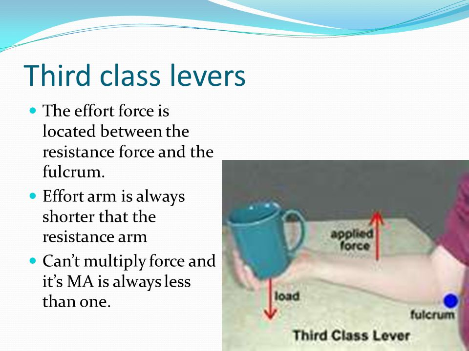 Third class levers The effort force is located between the resistance force and the fulcrum. Effort arm is always shorter that the resistance arm.