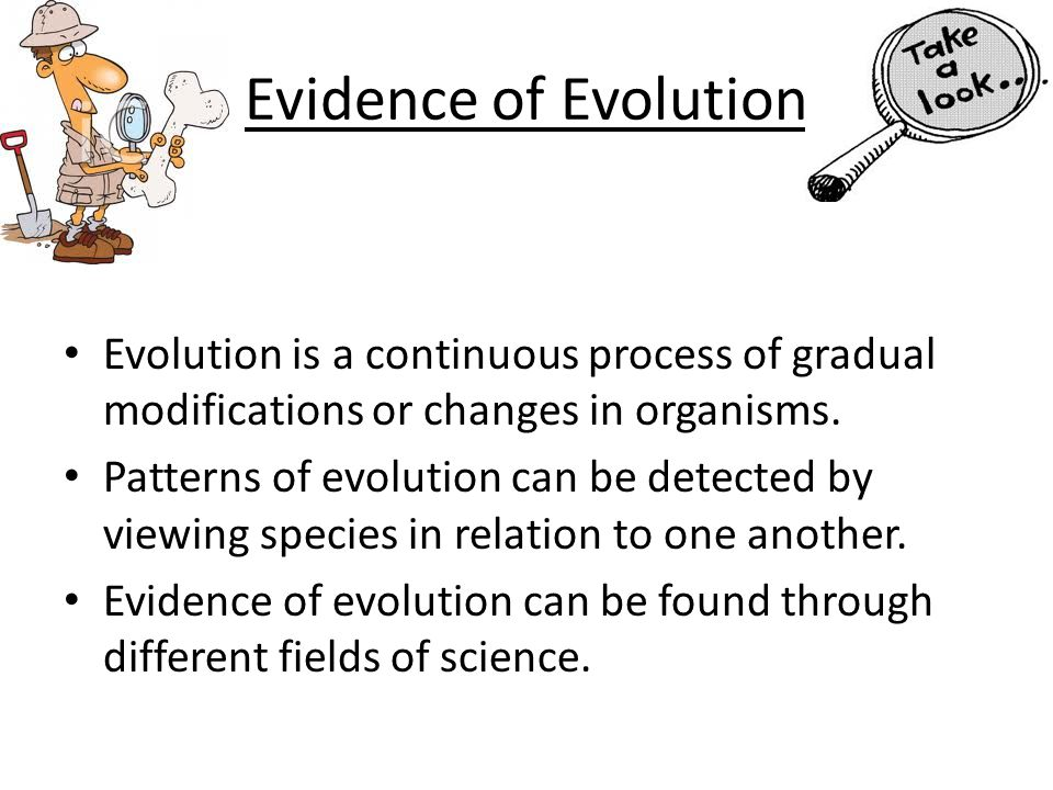 Evidence of Evolution Evolution is a continuous process of gradual modifications or changes in organisms.