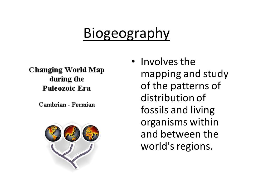 Biogeography Involves the mapping and study of the patterns of distribution of fossils and living organisms within and between the world s regions.
