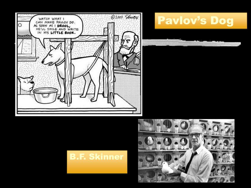 Pavlov's Dog B.F. Skinner