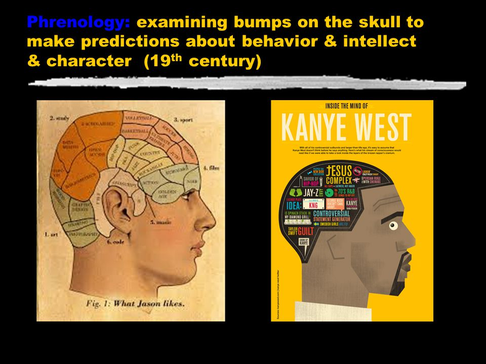 Phrenology: examining bumps on the skull to make predictions about behavior & intellect & character (19th century)