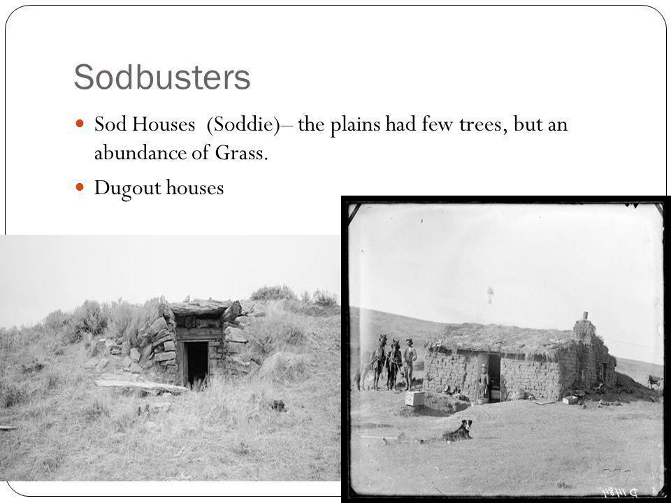 Sodbusters Sod Houses (Soddie)– the plains had few trees, but an abundance of Grass.