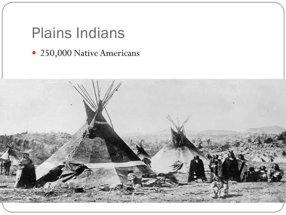 Plains Indians 250,000 Native Americans