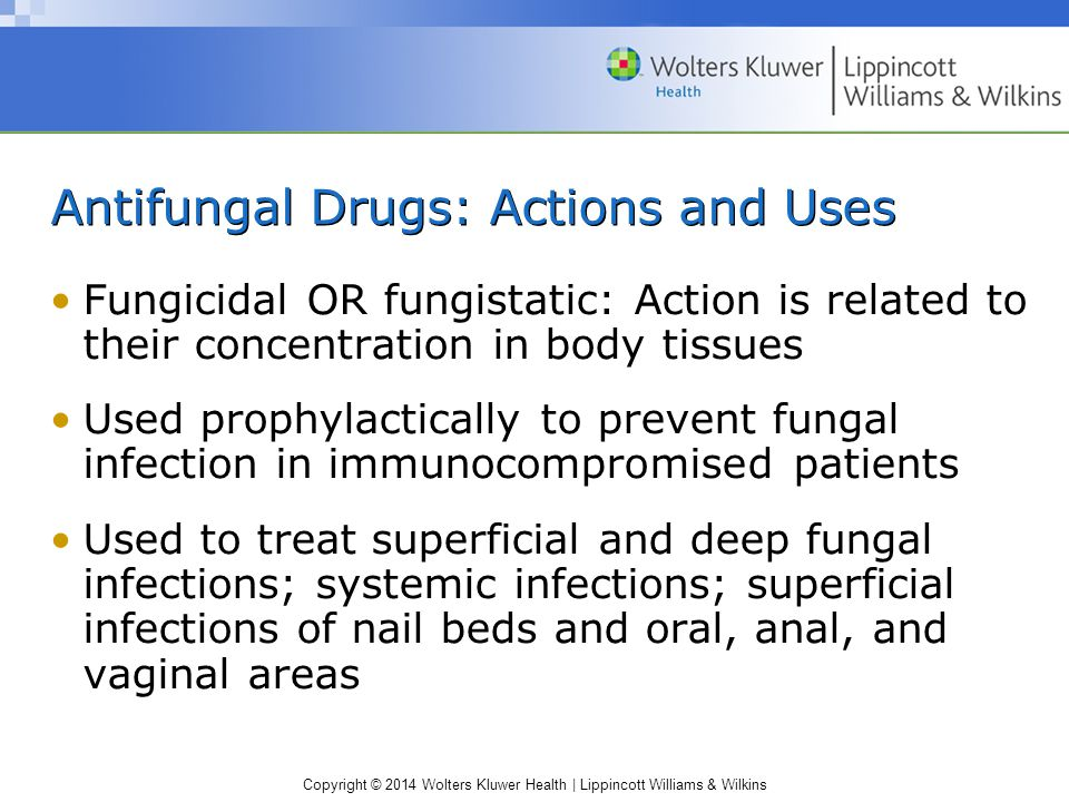 Antifungal Drugs: Actions and Uses