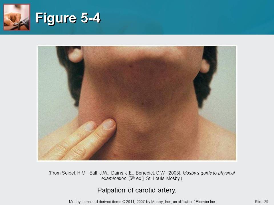 Palpation of carotid artery.
