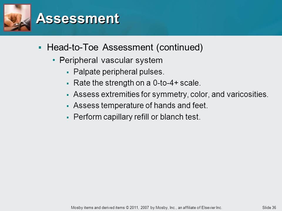 Assessment Head-to-Toe Assessment (continued)