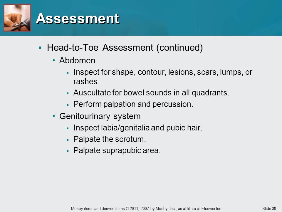 Assessment Head-to-Toe Assessment (continued) Abdomen