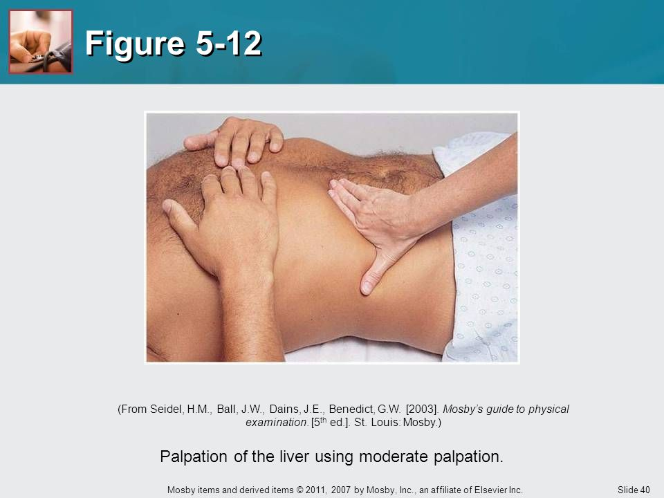 Palpation of the liver using moderate palpation.