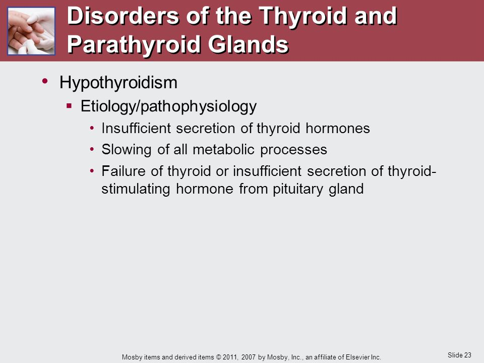 Disorders of the Thyroid and Parathyroid Glands