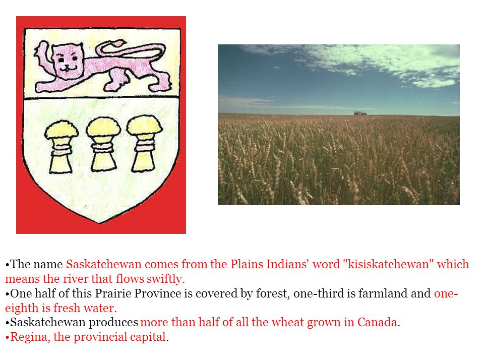The name Saskatchewan comes from the Plains Indians word kisiskatchewan which means the river that flows swiftly.
