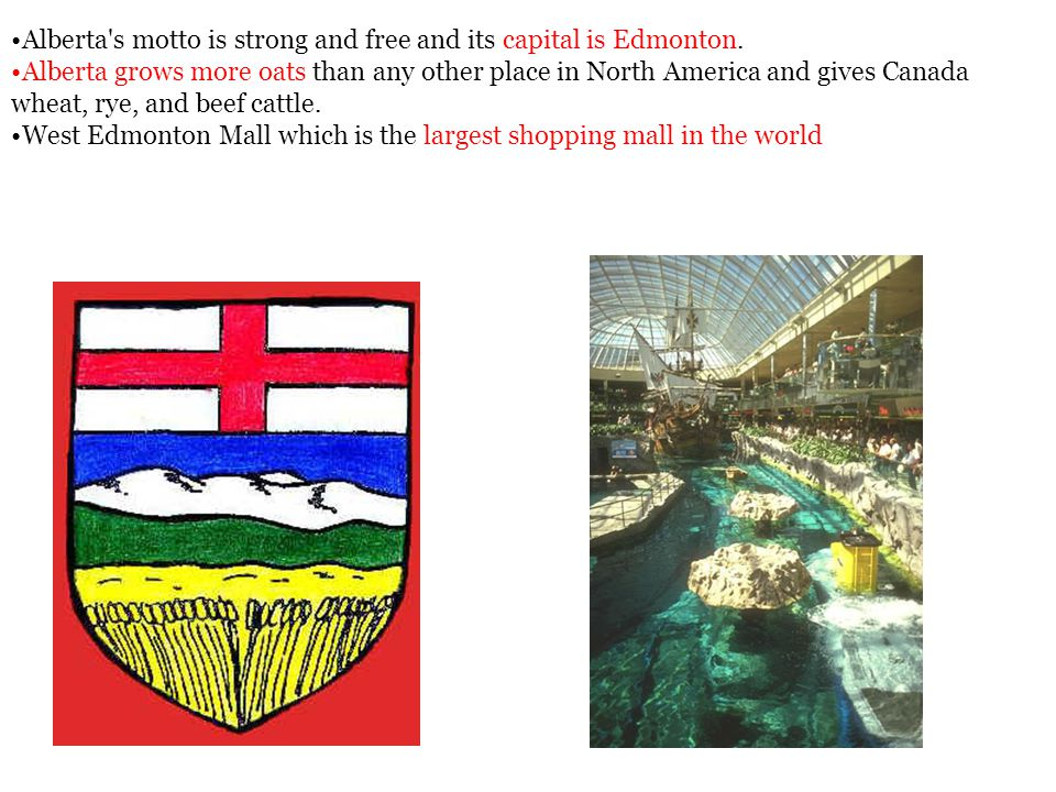 Alberta s motto is strong and free and its capital is Edmonton.