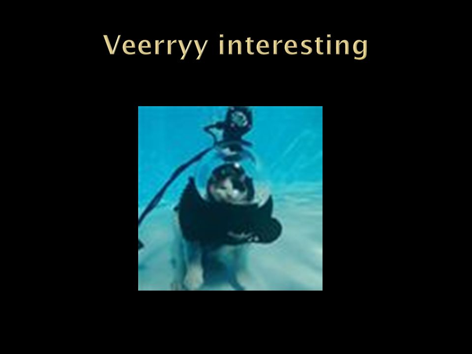 Veerryy interesting