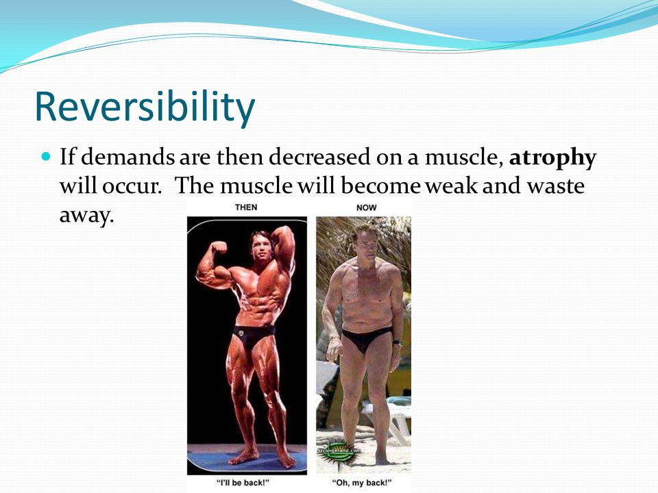 Reversibility If demands are then decreased on a muscle, atrophy will occur.