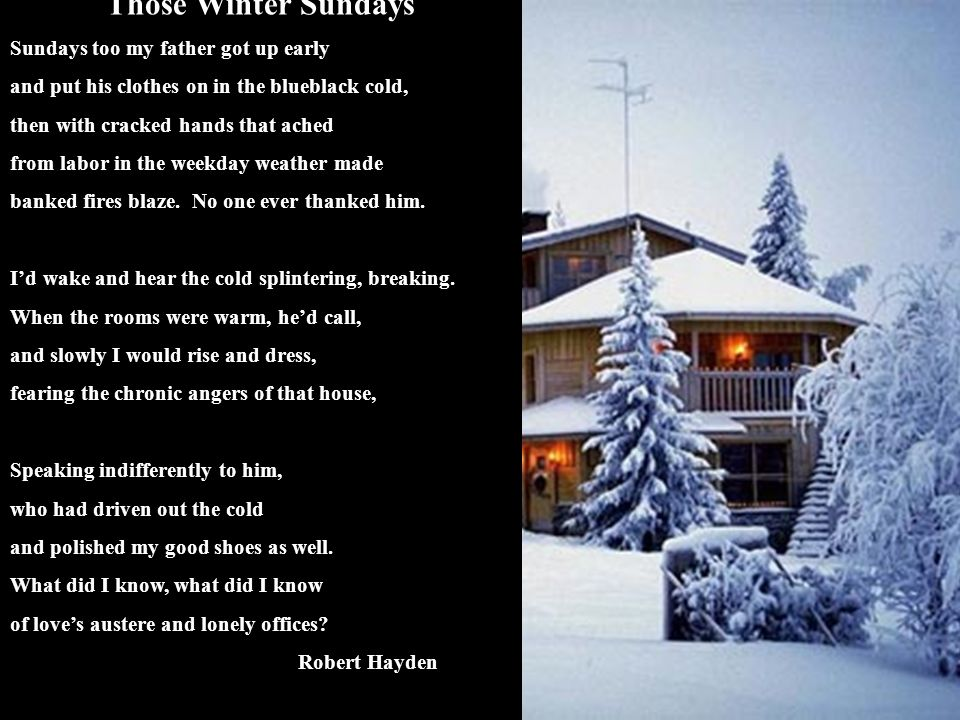 poetry those winter sundays by robert hayden english literature essay Free essay: those winter sundays those winter sundays is a very touching  poem it is written by robert hayden who has written many other poems.
