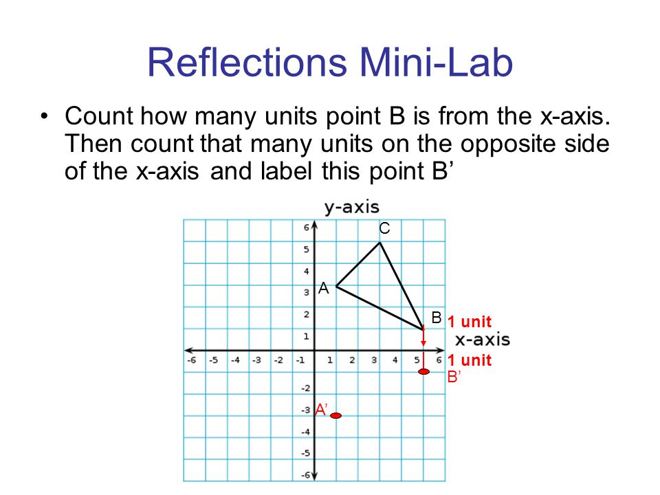 Reflections Mini-Lab