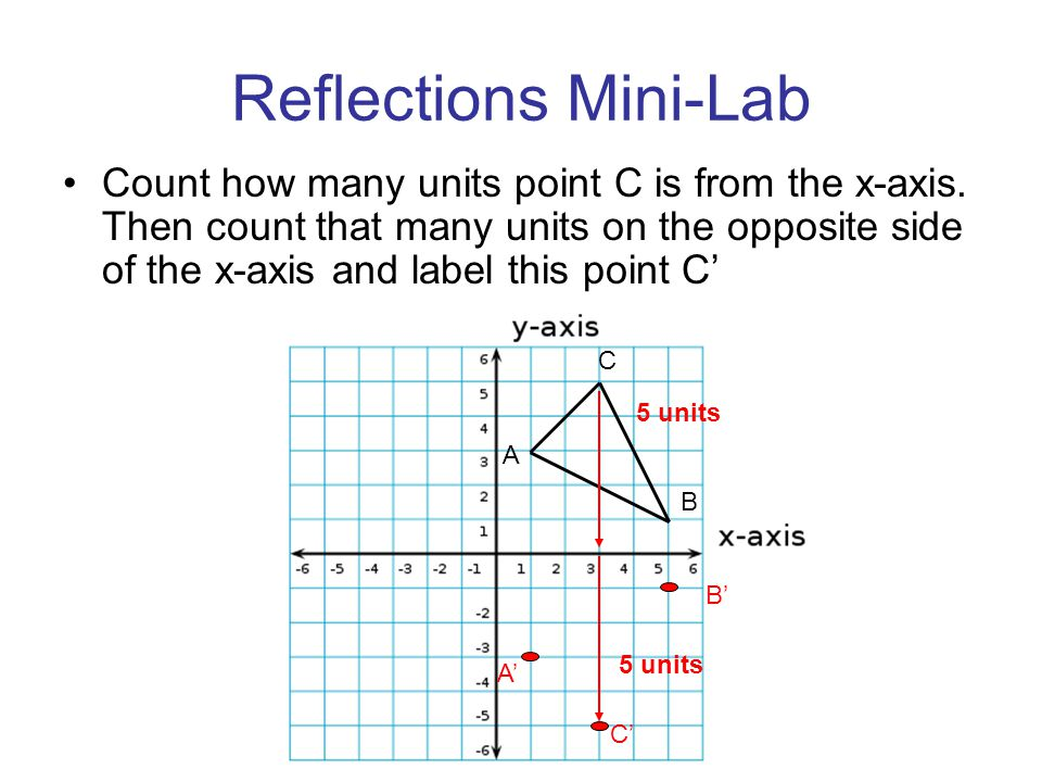 Reflections Mini-Lab