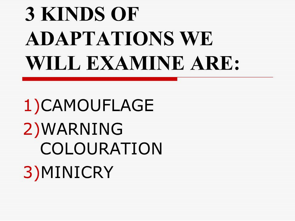 3 KINDS OF ADAPTATIONS WE WILL EXAMINE ARE: