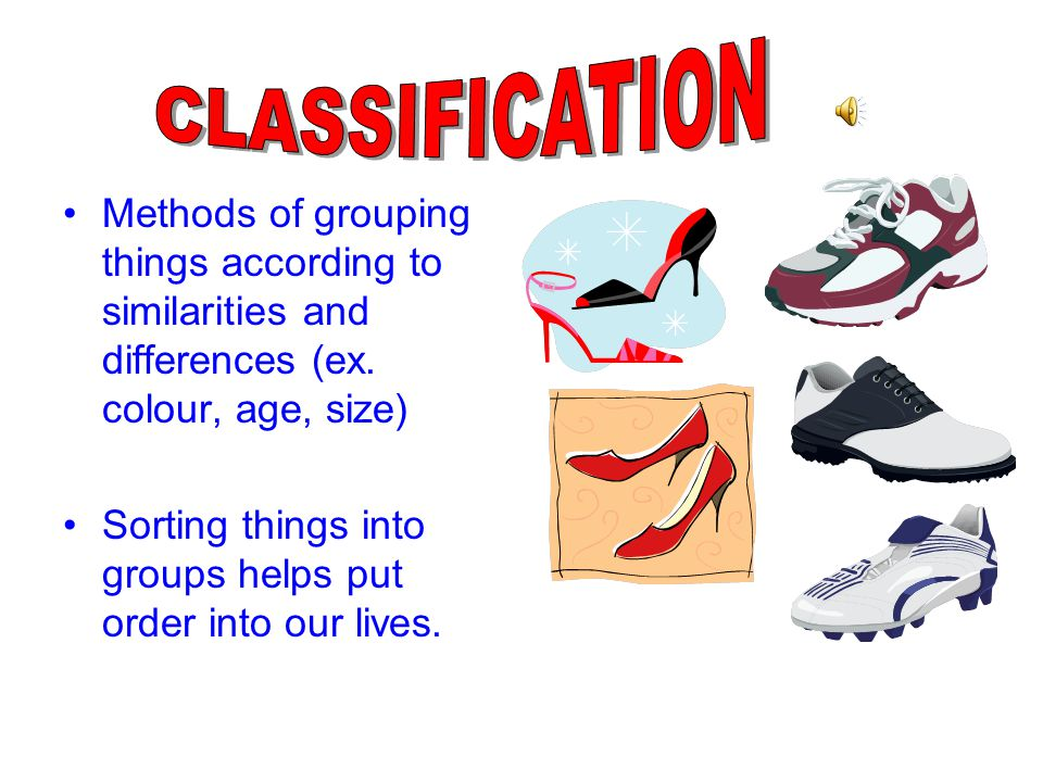 CLASSIFICATION Methods of grouping things according to similarities and differences (ex. colour, age, size)
