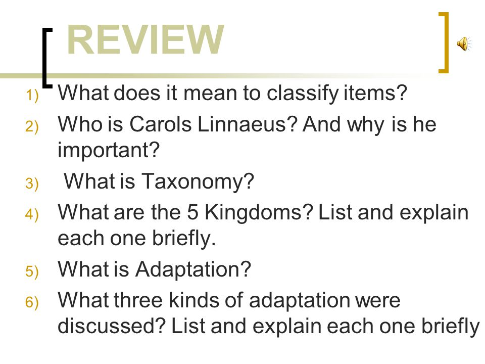 REVIEW What does it mean to classify items