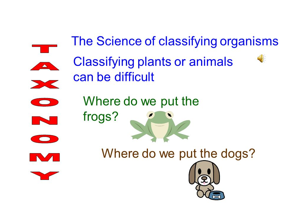 TAXONOMY The Science of classifying organisms