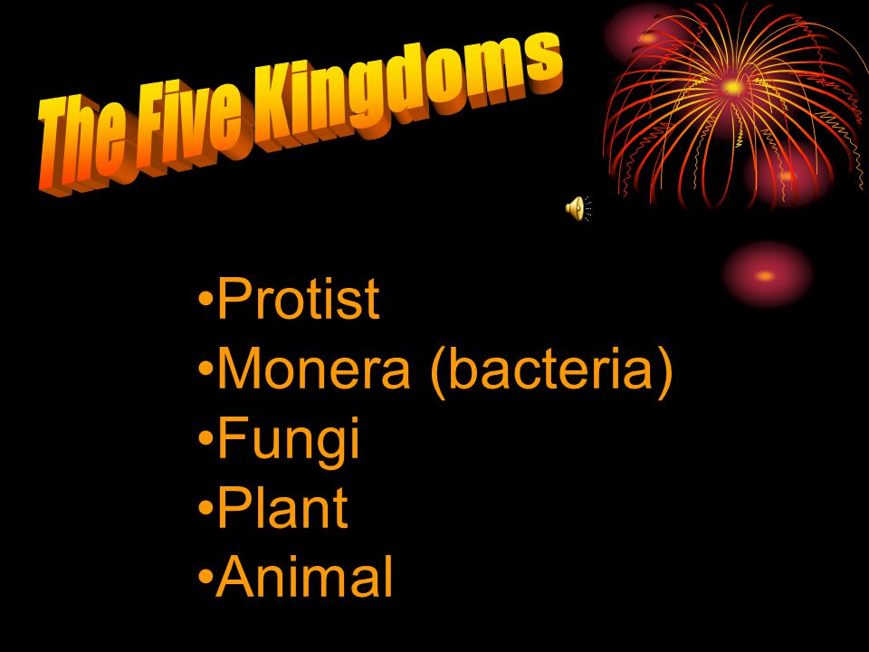 The Five Kingdoms Protist Monera (bacteria) Fungi Plant Animal