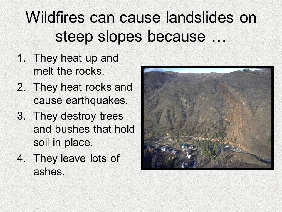 Wildfires can cause landslides on steep slopes because …