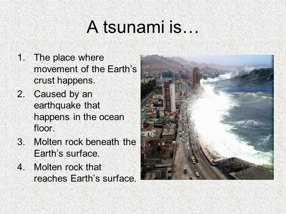 A tsunami is… The place where movement of the Earth's crust happens.