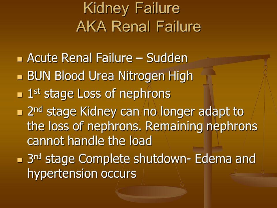 Kidney Failure AKA Renal Failure
