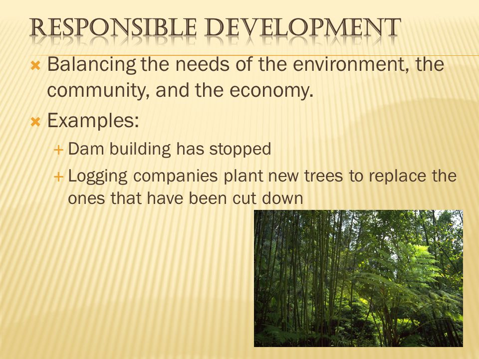 Responsible Development