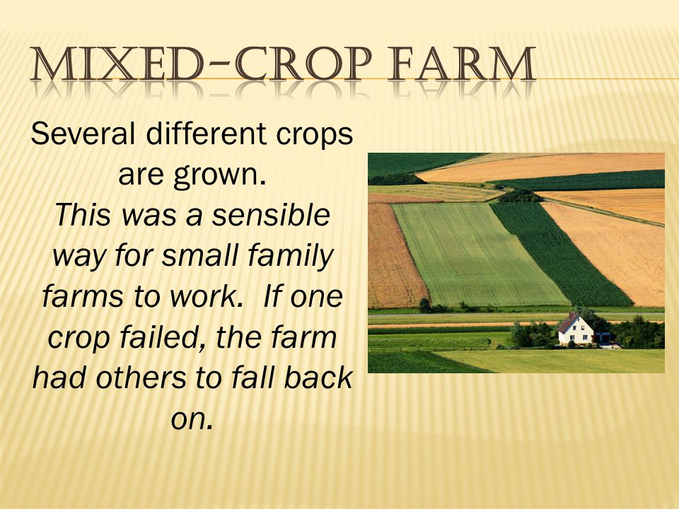 Several different crops are grown.