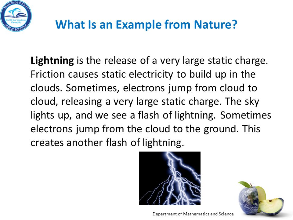 What Is an Example from Nature