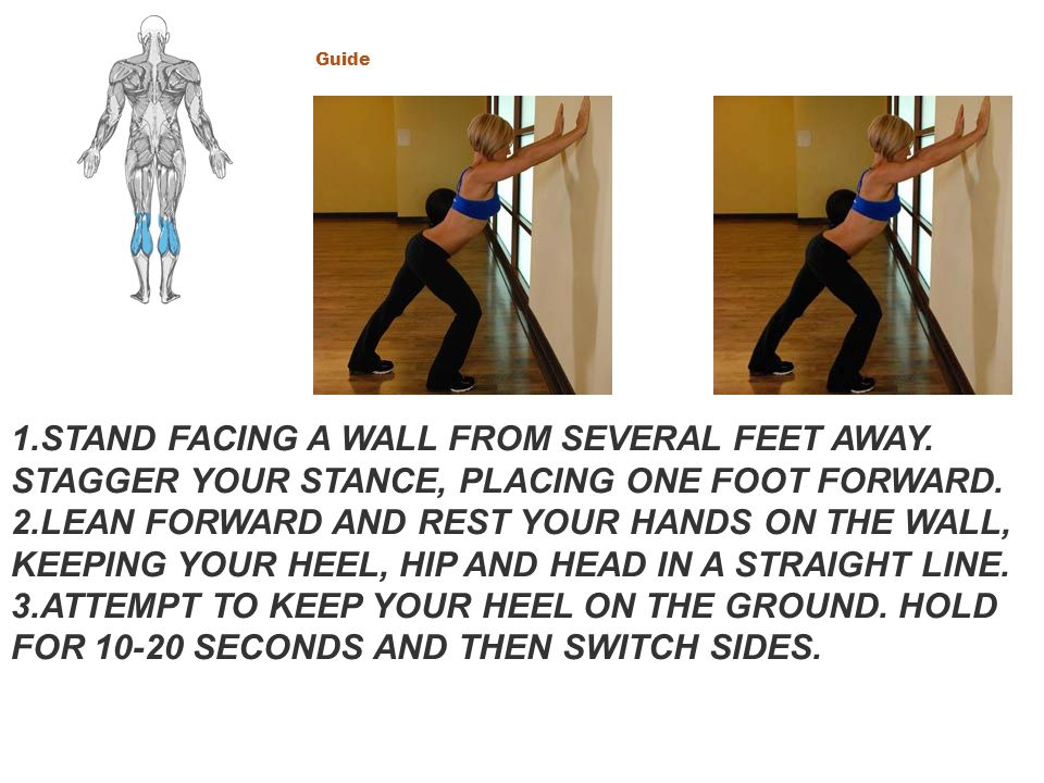 Main Muscle: Calves CLICK TO ENLARGE. Calf Stretch Hands Against Wall Guide. CLICK TO ENLARGE.