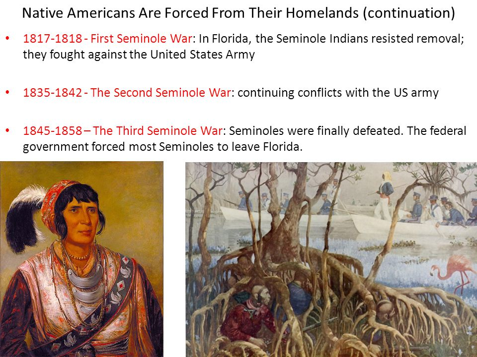 Native Americans Are Forced From Their Homelands (continuation)