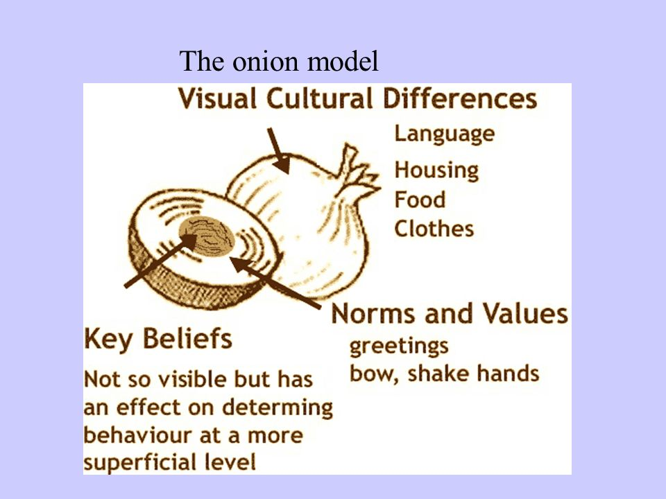 The onion model
